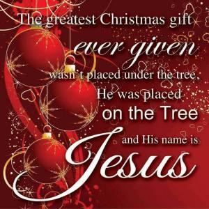 christmas tree.jAmy.2